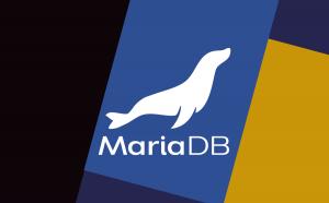 MariaDB MaxScale でHTAPを実現する SmartRouter について